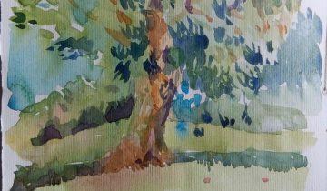 Arbre peint à l'aquarelle.